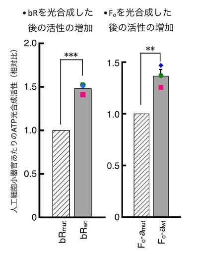 車_図4.jpg